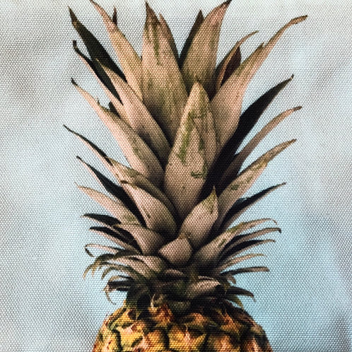 Big Ananas Bag