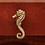 Thumbnail: Seahorse Knob