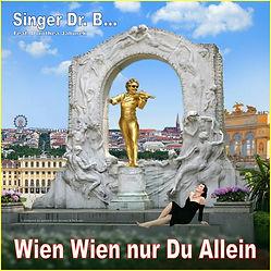 Singer Dr. B... - Wien Wien nur Du allein