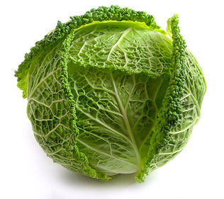 Savoy Cabbage head Isolated on White Bac