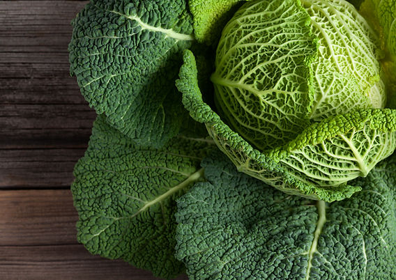 Savoy cabbage super food close up. Top v