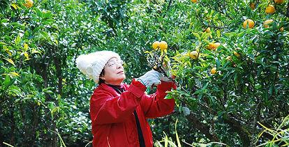 h_s_bossyuzugari1-crop-u6765.jpg