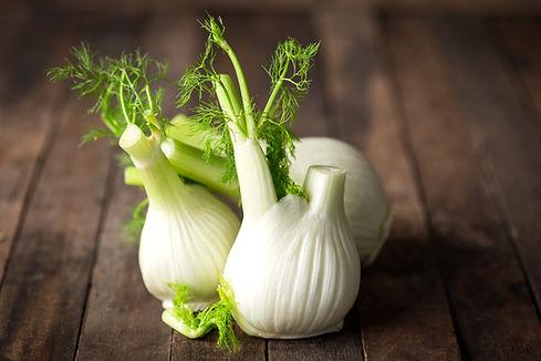 Fresh fennel bulb.jpg