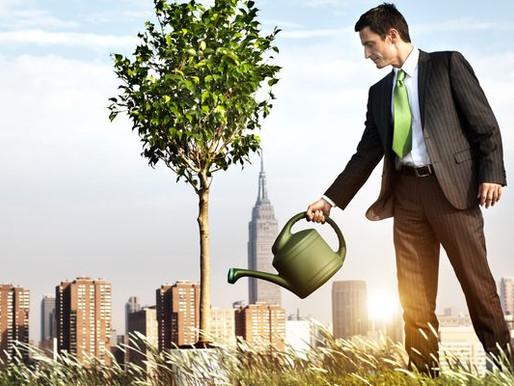 Tripé da sustentabilidade: o que é e como aderi-lo ao seu negócio