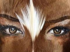 detail TRIBES Skin Springbok