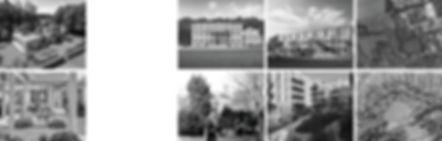 Website 7.jpg