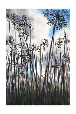 Seedheads_by_Julia_Vaughan