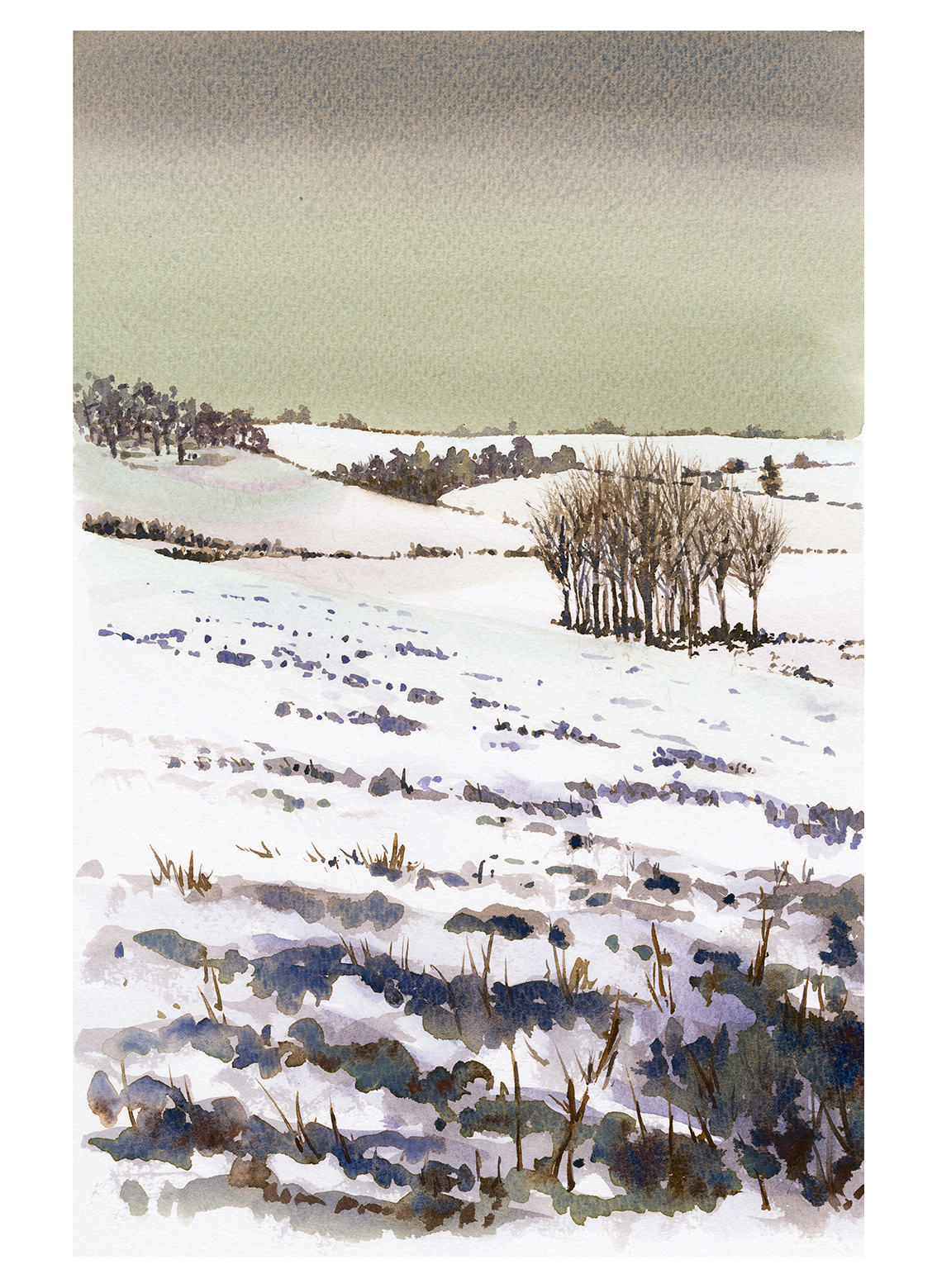 Winter on Marlborough Downs III