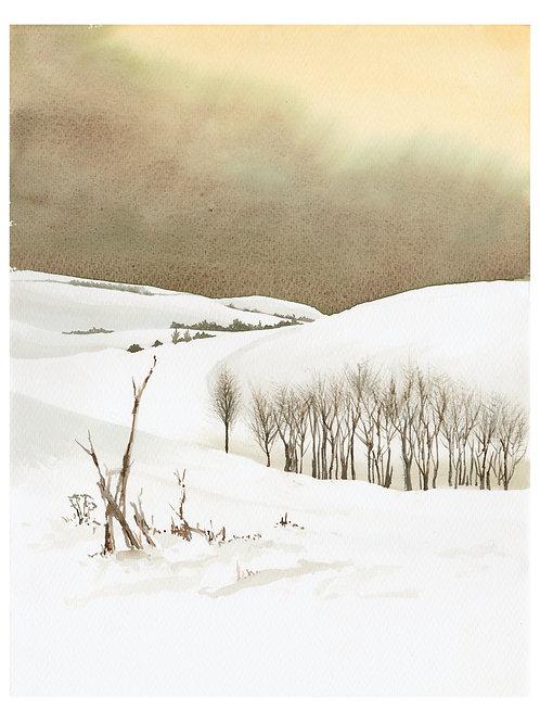 Winter on Marlborough Downs II