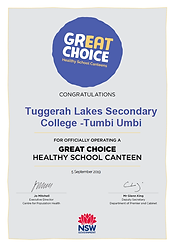 TLSC Healthy School Certificate.png