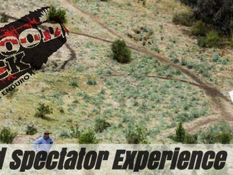 2015 Wildwood Spectator Experience
