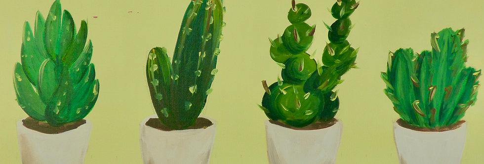Succulents Canvas