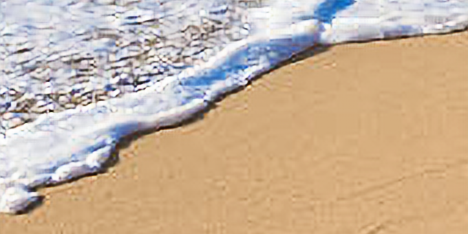 Family Workshop: Beach Footprint Canvases
