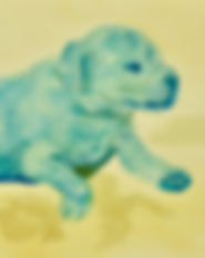 Puppy Watercolor Painting Art