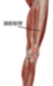 ランナー膝 腸脛靭帯炎 膝の外が痛い 患部