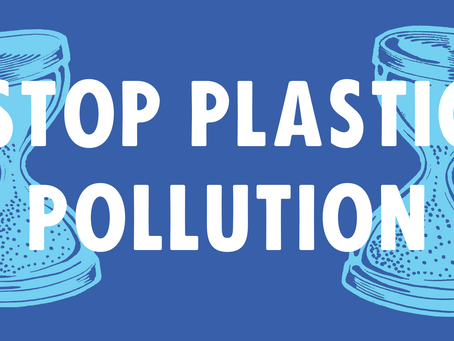 The Impact of Washing Synthetic Plastics