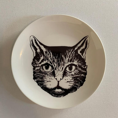 Cat Stevens decoration plate