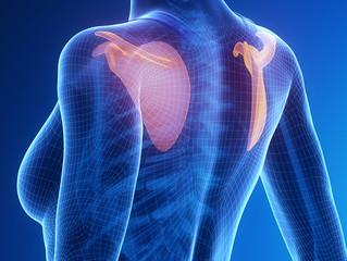 MedEx Monthly; Shoulder Health