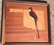 Oaklohoma State Bird
