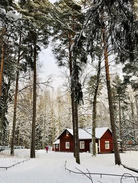 Villa-Ullas-cafe-Helsinki_Explore_with_Kati.jpg