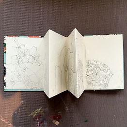 accordeon sketchbook-assiabennani.jpg