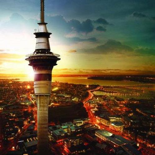 Auckland Jan 17-22nd