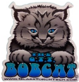 Sticker - Bobcat.PNG