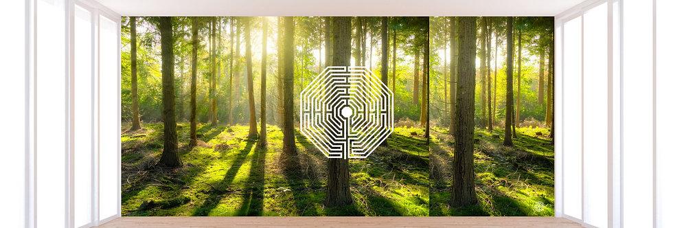 Forest Damiens Adesivo de parede