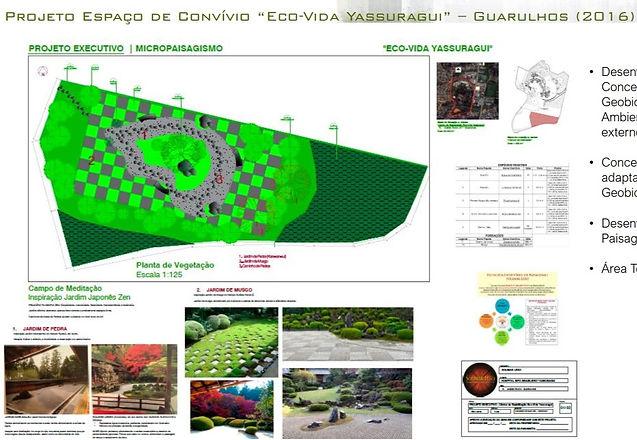 Projeto de Macro Paisagismo Solimar Leão_edited.jpg