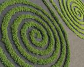 Crop Circle Geometria Sagrada.jpg