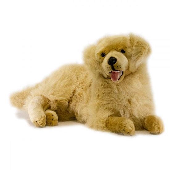 Spencer - Large Plush Dog Aid