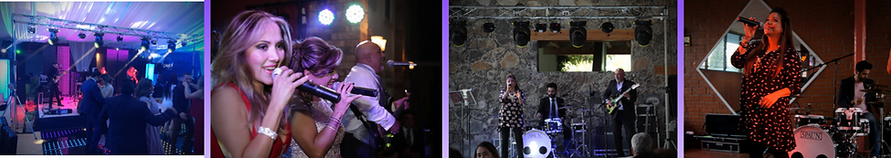 Grupo Musical Versátil Matiz.png
