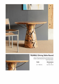 19. TRUMBLE Dining Table