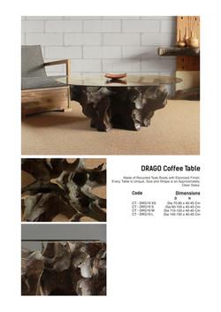 19. DRAGO Coffee Table