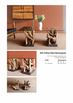 18. ACE Coffee Table Rect