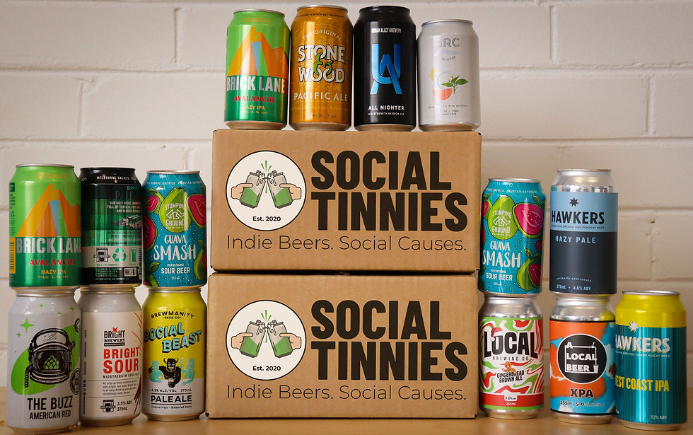Social Tinnies Gift Box - 16 Beer Case