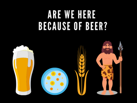 Are We Here Because of Beer?