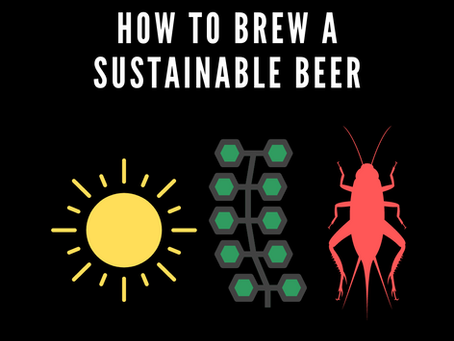 How To Brew A Sustainable Beer