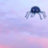 Spider top.png