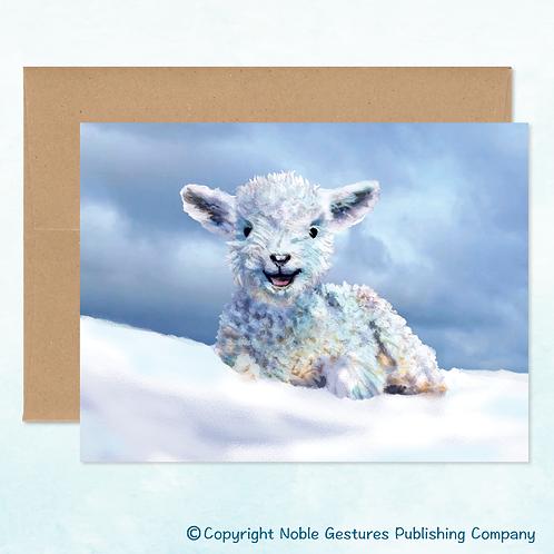 'Winter Lamb' Note Card