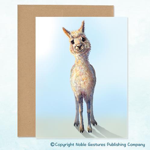 'Peaceful Llama' Note Card