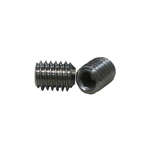 Hex Socket Cap Screw (Cup Point) M6x8 SS A2-304