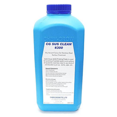 #300 SUS Clean Solution 2kg (SS Surface Treatment)