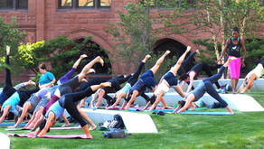 FREE YOGA IN THE HEART OF CLEVELAND - YOGA ON THE GREEN