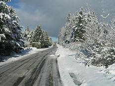 Snow 2007 13.jpg