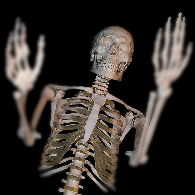 Dem Bones Dem Bones.jpg