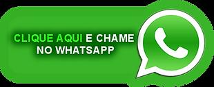 chame-no-whatsapp.png