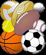 Sports_portal_bar_icon-252x300.png