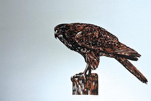Falcon - Wood Cut Print