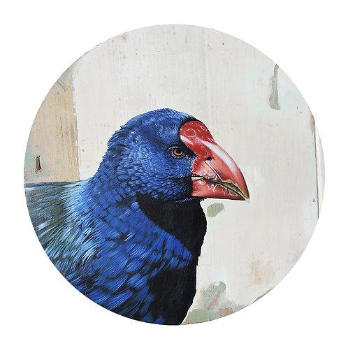 Takahe - Limited Edition Print